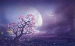 & Purple Sky wallpapers | Pink Tree Moon & Purple Sky stock photos 1501