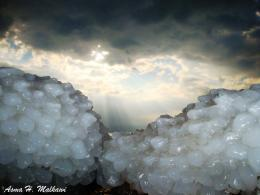 PanoramioPhoto of Dead Sea Salt Crystals 1602