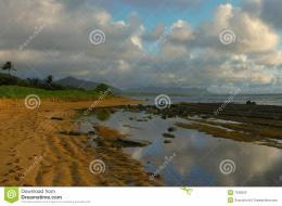 Dawn reflections in tidal pools, captured at Wailua Beach on the 558