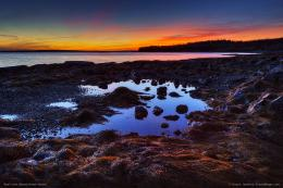 Twilight reflection in tidal pool at Seal Cove 1523