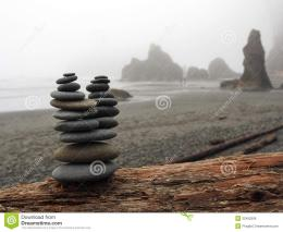 rocks sitting on a driftwood log with sea stacks, beach, and ocean in 457