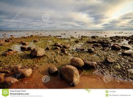 Rocky Seashore Royalty Free Stock PhotoImage: 15443365 1597