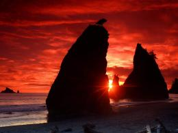 Sea Stacks Knife a Blood Red Sky%2C Olympic National Park jpg 195