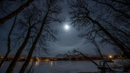 Download Moon shining on the lake wallpaper 875