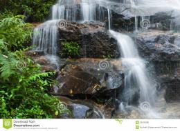 Smooth Waterfall And Green Leaves Royalty Free Stock ImageImage 720