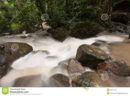 Smooth Waterfall In Forest Royalty Free Stock PhotographyImage 1312