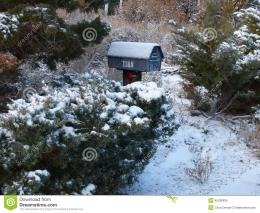 Snow hedge covered dusted mailbox house walkway address home season 434