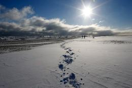 two women walk their dogs along a snow covered beach 112