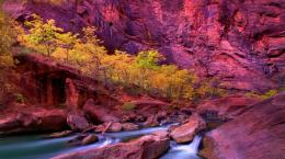 Splendid colorado canyon 983