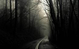 Strange Road In Scary Wood Wallpaper HdFree Android Application 507