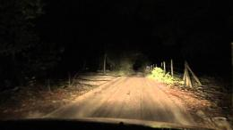 Dirt Scary Road to Haunted Woods in Florida SomewhereYouTube 802
