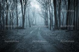 Road trough a dark scary forest with fog — Stock Photo © photocosma 173