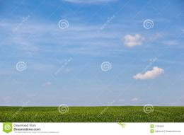 Summer Field With Blue Sky Over It Royalty Free Stock ImagesImage 1824