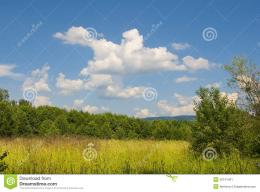 Summer Landscape With Blue Cloudy Sky Stock ImageImage: 20141401 284