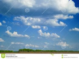 Summer Forest And Blue Sky Royalty Free Stock PhotoImage: 12929235 1788