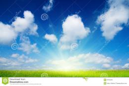 Summer Flowers And Blue Sky Royalty Free Stock ImagesImage: 8703549 1706
