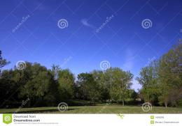 Summer Blue Sky Royalty Free Stock PhotoImage: 14266395 1178