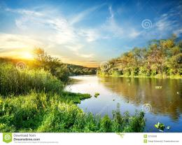 Sunrise Over The Forest River Royalty Free Stock ImagesImage 1027