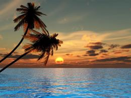 Sunset Beach Wallpapers 988