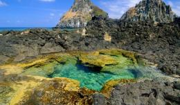 Tide Pool In Pernambuco Brazil Hd Wallpaper | Wallpaper List 790