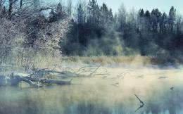 Winter, Lake, Fog, Tree, Nature | Free HD wallpapers 199