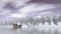 Winter Lake View , frozen, house, lake, pond, trees | Free HD 1139