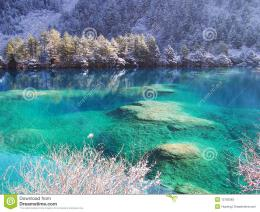 Winter Tree And Lake In Jiuzhaigou Stock PhotosImage: 13792383 1225