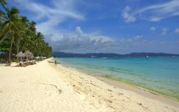 Tropical Beach wallpaper14868 884