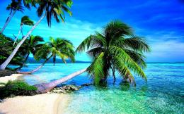Tropical Beach Desktop Backgrounds Tropical beach… 380