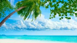 Tropical BeachMost Famous Places 428