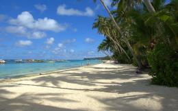 tropical beach wallpaper 1144