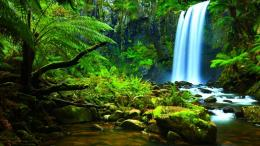 Download Amazon Waterfalls wallpaper in Nature wallpapers with all 1466