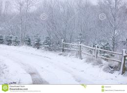 Typical scene of North Europe winterroad goes through snowy forest 700