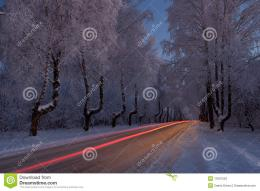 of North Europe winterroad goes through snowy forest in blue hour 1116