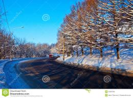 Road Through Winter Forest Royalty Free Stock PhotoImage: 23391895 1504