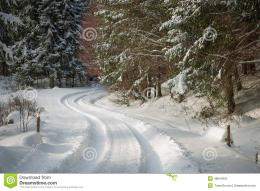 Road Covered In Snow Through A Winter Forest Stock PhotoImage 1943