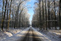 Empty road in a forest in wintertime with blue sky, snow and trees 1215