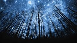 beautiful starry night sky Car Pictures 110