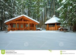 Wooden cottage in snowy forest in winter day 1461