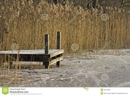 Bridge In Winter Royalty Free Stock ImageImage: 35219836 1748