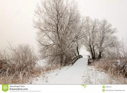 Dutch Winter Landscape With A Small Wooden Bridge Royalty Free Stock 1968