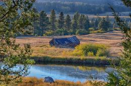 Abandoned cabin in western Montana ranch countryIt's a bit of a 1905