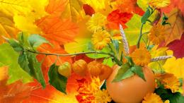 Abundance of fall colors yellow harvest wallpaper 974