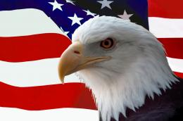 "Home » Search Results for ""Flag And Eagle\"" Query 923"