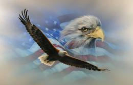 American Flag Eagle Wallpaper | Places & Travel 1981
