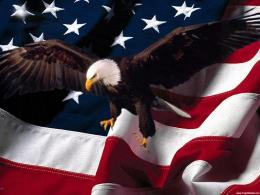 American Eagle Patriotic Background 192