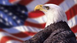 American Flag Wallpapers 1166