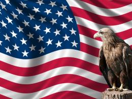 American Flag Eagle : Patriotism and Heroism 1691