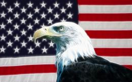 Digital American Flag American Eagle desktop wallpaper 205