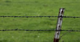 The harmful barbs of barbed wire are not idealThese fences were 427